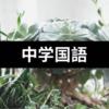 中学国語「漢字の成り立ち(象形・指事・会意・形声文字)のポイント」