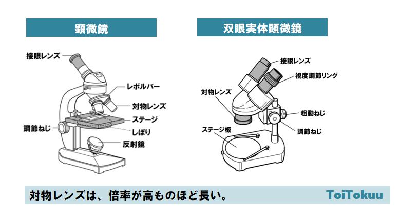 顕微鏡(中学理科)